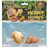 Hermit Crab Homes Medium 2/Pkg