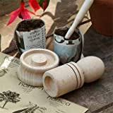 Paper Potter - Perfect Gift for the Gardenerby Nether Wallop
