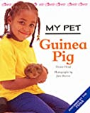 Honor Head Guinea Pig (My Pet)
