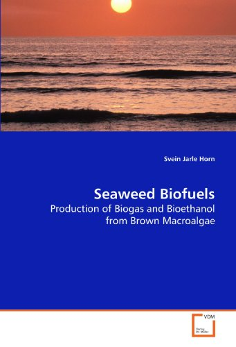 Seaweed Biofuels: Production of Biogas and Bioethanol from Brown Macroalgae