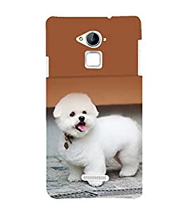 printtech Cute Dog Puppy Back Case Cover for Coolpad Note 3
