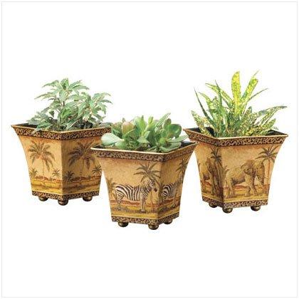 3 Garden Pots Safari Scenes Flower Tin Planter Plant [Kitchen]