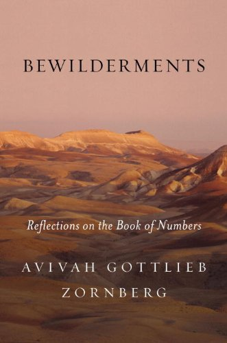 Bewilderments: Reflections on the Book of Numbers
