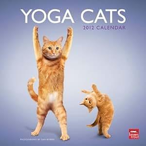 """Yoga Cats 2012 Wall Calendar 12"""" X 12"""""""