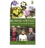 img - for Blodau Gwyllt: Cymru Ac Ynysoedd Prydain (Paperback)(Welsh) - Common book / textbook / text book