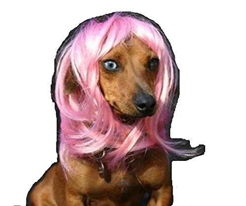 Pet Parrucca di Natale di Halloween capelli cane divertente Natale parrucca costume ( rosa)