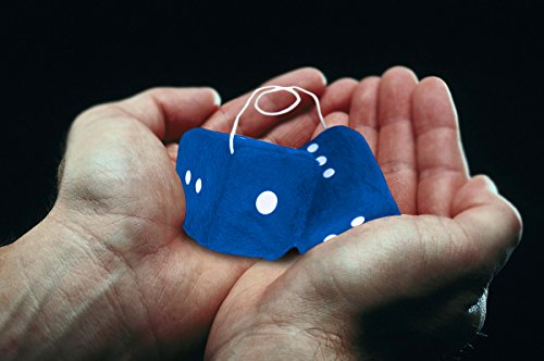 Zone-Tech-Blue-Hanging-Dice-A-Pair