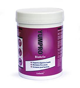Yumpro Bioactiv Tablet (60 Tablets)