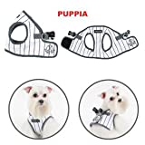 Puppia Home Run Soft Jacket White S