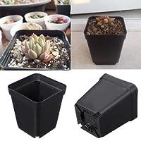 2.5 Inch Plastic Square Flower Pot Black Seedling Plants Pots For Garden Balcony