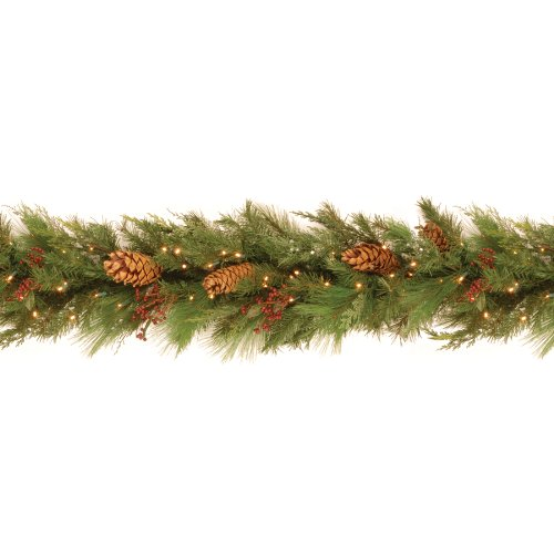 National Tree Whp13-300L-6B-1 White Pine Garland With Pine Cones And 100 Soft White Led Battery Operated Lights, 6-Feet