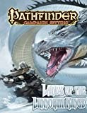 Pathfinder Campaign Setting: Lands of the Linnorm Kings [Paperback] [2011] Supplement Ed. Colin McComb, Matthew Goodall, Rob McCreary