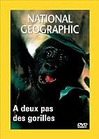 National Geographic : A deux pas des gorilles