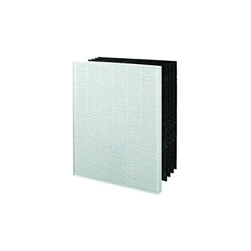 Winix 113050 Size 17 Replacement HEPA Filter Set for P150 Air Cleaner (Hepa Air Filter Winix compare prices)