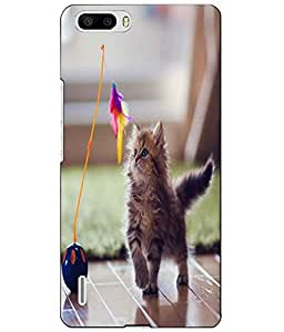 Snazzy Printed Back Cover for Huawei Honor 6 Plus