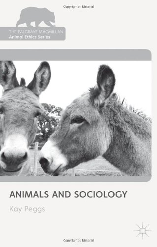 Cover of Animals and Sociology