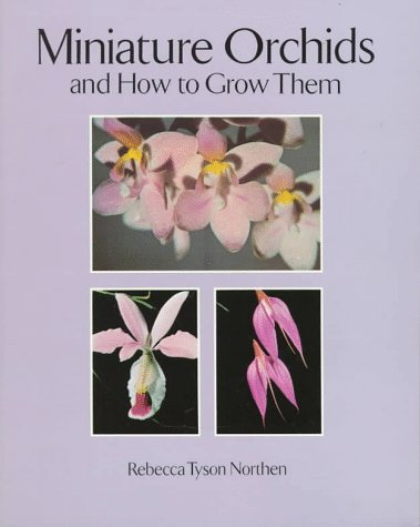 Miniature Orchids and How to Grow Them