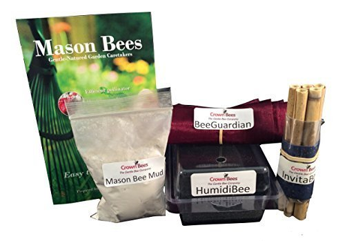 Total Mason Bee Accessories Kit by Crown Bees