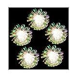 Kurt Adler UL1261C Clear Iridescent Flower Light Set, 10 Light
