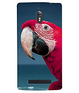 Fuson Premium Cute Macaw Printed Hard Plastic Back Case Cover for Oppo Find 7