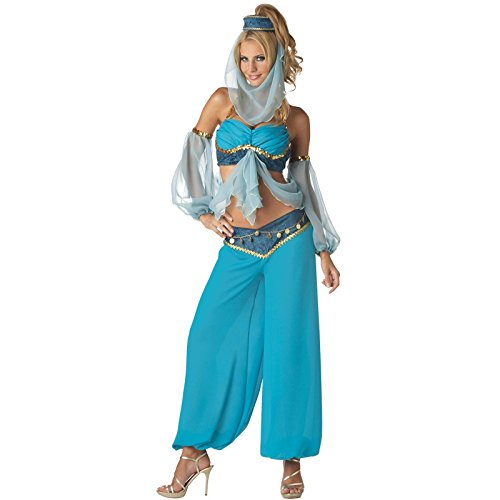 Harem's Jewel Elite Collection Adult Costume - Adult Costumes