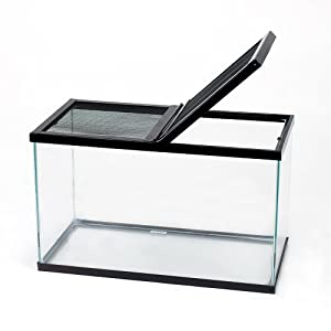 Amazon.com: Amphibian or Reptile Tank, 20 gal: Industrial & Scientific
