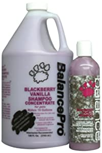 Kenic Blackberry Vanilla Pet Shampoo, 16-Ounce