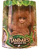 Tandars Interactive Pets Male Electronic Plush