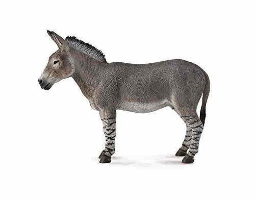 CollectA Wildlife African Wild Donkey #88664