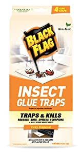 Black Flag 4 Count Insect Glue Trap, 1-Pack