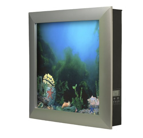 Five Inexpensive Saltwater Aquariums Fish Tanks