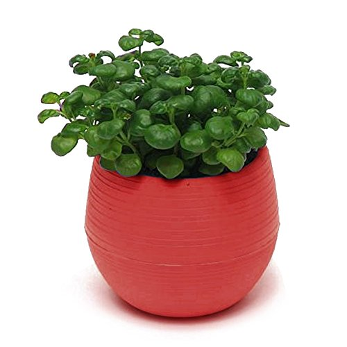 225 & Colourful Cute Round Plastic Plant Flower Pot Home Office Decoration Planter New