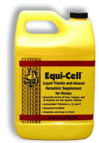 Richdel Inc Equi Cell 1 Gallon