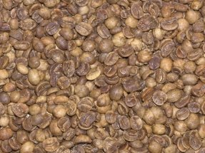 Decafe Sumatra Green Coffee Beans - 5Lbs