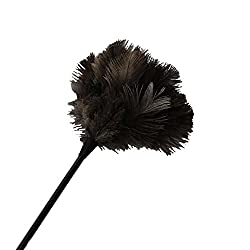 New Sowder High Quality Fullness Natural Ostrich Feather Dusters 10