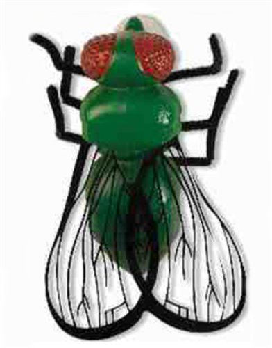 The Texas Housefly
