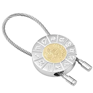 Capricorn Zodiac Key Ring Zodiac Signs Key Chain Holder (Silver Gold)