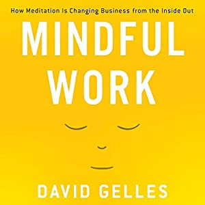 Mindful Work Audiobook