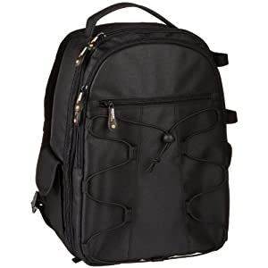 Amazon.com : AmazonBasics Backpack for SLR/DSLR Cameras