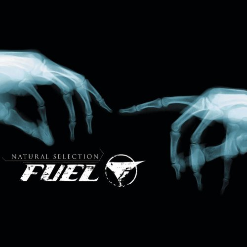 Fuel - Die Like This Lyrics - Zortam Music