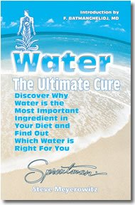 Water The Ultimate Cure: Discover Why Water is the Most Important Ingredient in your Diet - by Steve Meyerowitz
