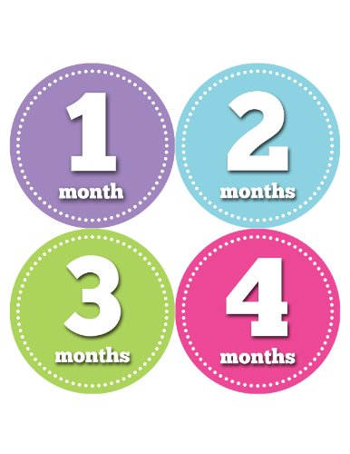 Months in Motion 062 Monthly Baby Stickers - Baby Girl - Month 1-12 - Milestone Age Sticker Photo