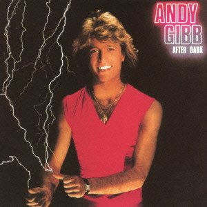 After Dark by Andy Gibb
