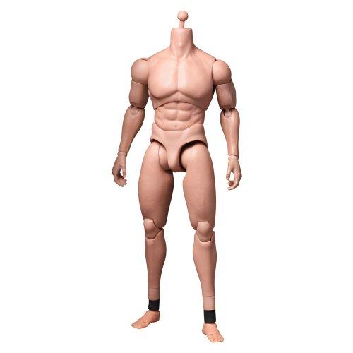 HOT TOYS 1//6 TTM20 TRUETYPE BASIC SERIES ADVANCED ACTION FIGURE MUSCULAR BODY