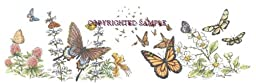 Butterflies - Drawing by Cindy Farmer