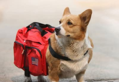 Kittymouse Red Dog Backpack Dog Pack Removable Saddlebag Style, Large
