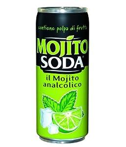 Welches Soda FГјr Mojito