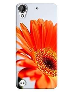 HTC Desire 630 Back Cover By FurnishFantasy