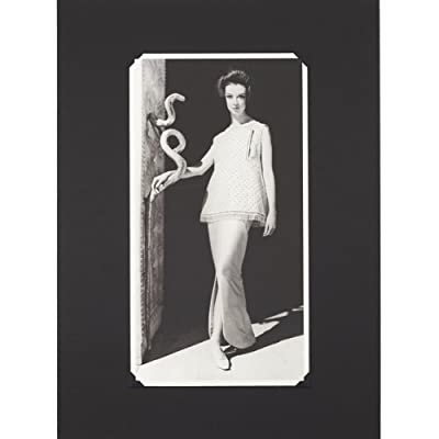 Fabiani Cleopatra Dress (Photographic Mounted Print)||EVAEX