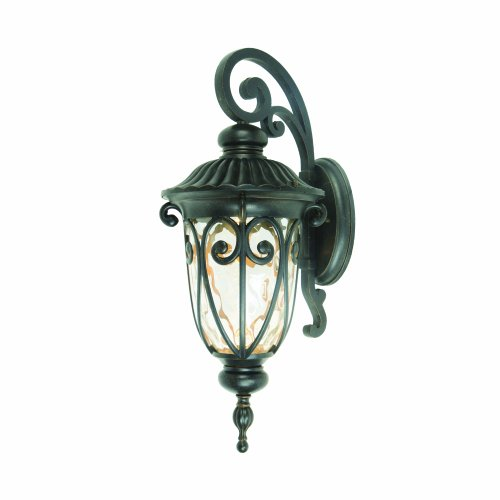 Yosemite Home Decor E519Mdorb 1 Light Led Exterior With Clear Medium Sized Glass, Oil Rubbed Bronze Finish